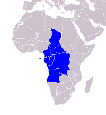 pays les plus riches Afrique centrale
