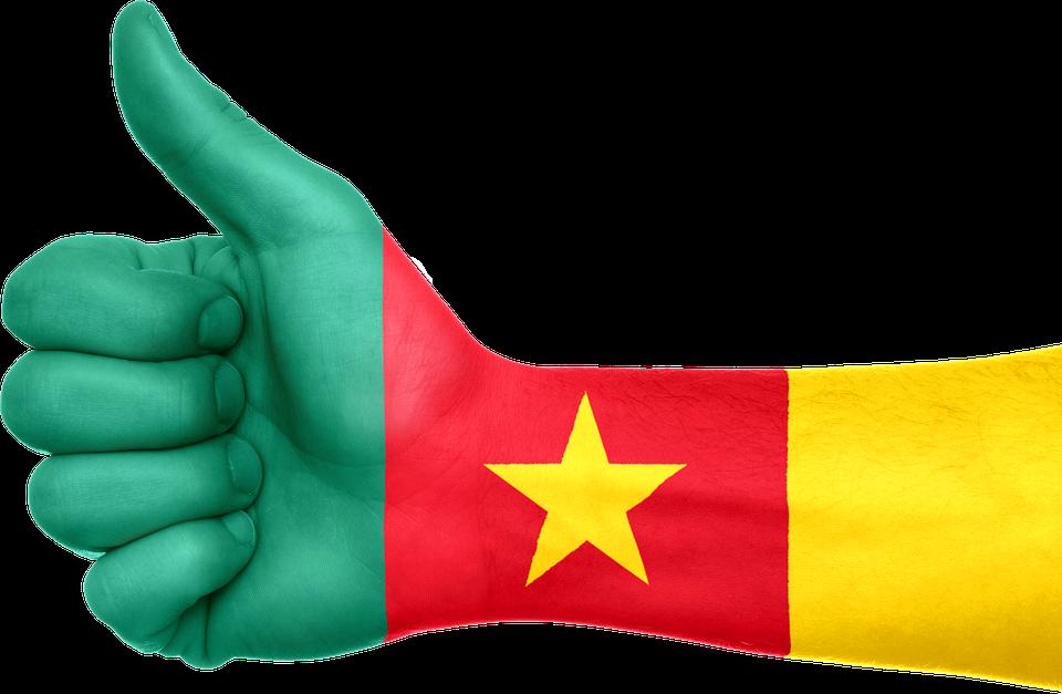 homme le plus riche du Cameroun