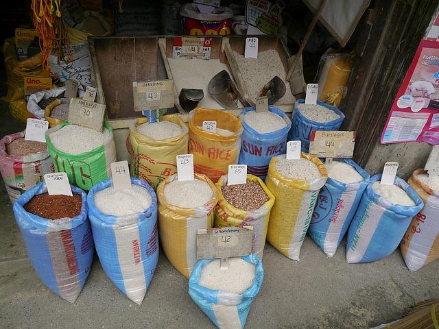 riz avarié destruction suspendue