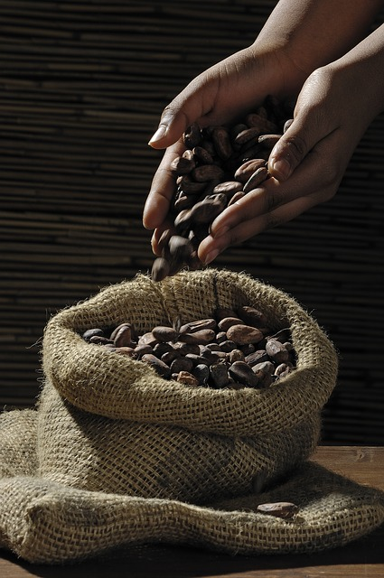 prix du cacao en 2020 cote d'ivoire