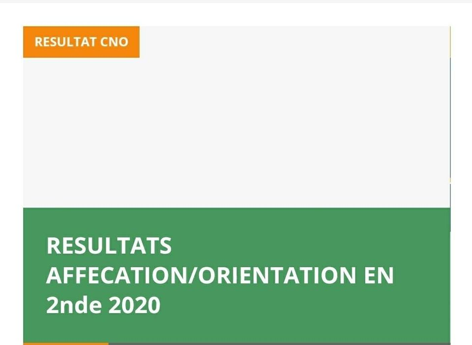 orientation en seconde affectation résultats